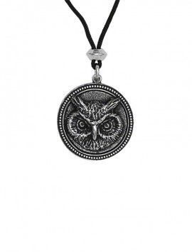 The Owl represents Wisdom and Seeing Through Deception