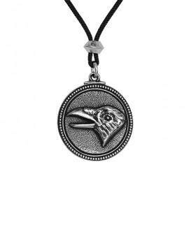 The Raven represents Creation, Shapeshifting and Magic.