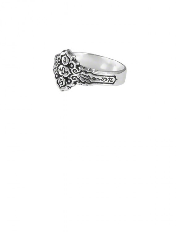 The Magic of this ring enables the bearer to bring the Healing Powers