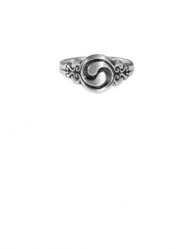 Sterling Silver Celtic Ring of Spiritual Growth